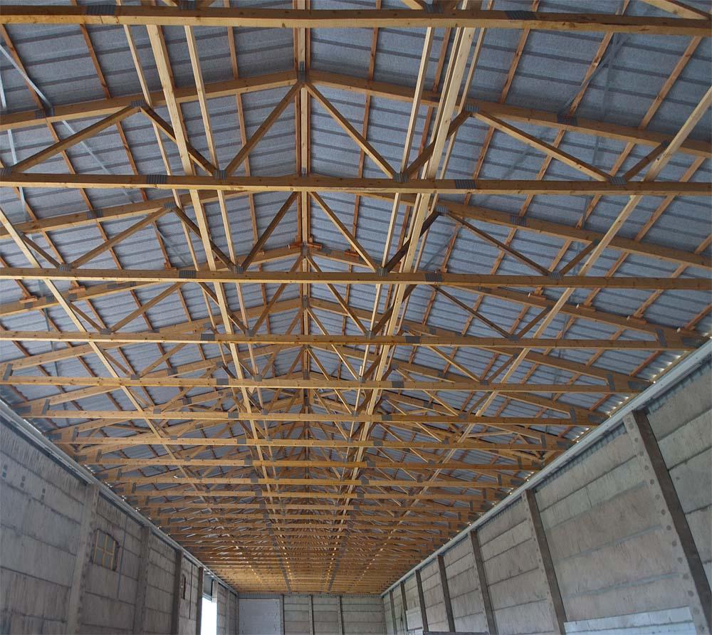 Nagelplatten Dachbinder Stabilität Dachverbände Kippaussteifung Längsverband Fachwerkträger Trapezblech Nagelplatte Bauen im Bestand Dachkonstruktion